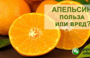 апельсины польза и вред для здоровья