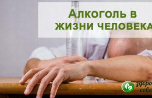 Алкоголь - вред на организм человека