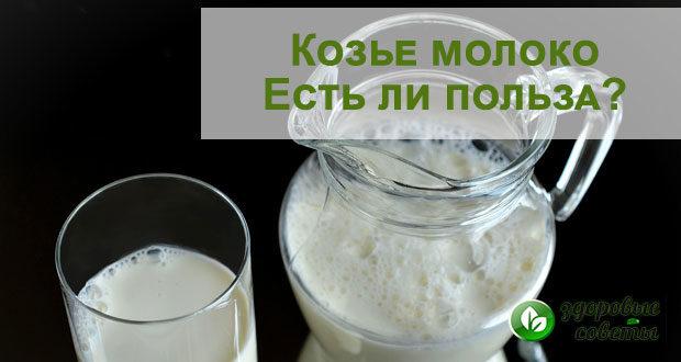 Козье молоко - польза и вред